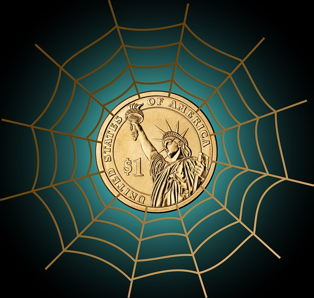 dollar caught in web