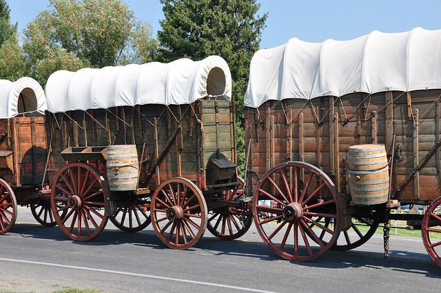Covered Wagons Train