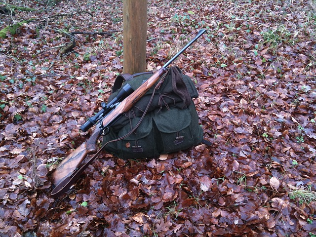 rifle safety